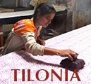 Tilonia