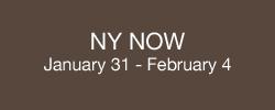 NY web button
